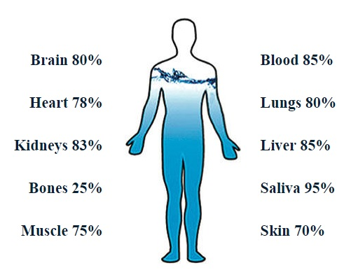 Importance Of Drinking Water Treatment